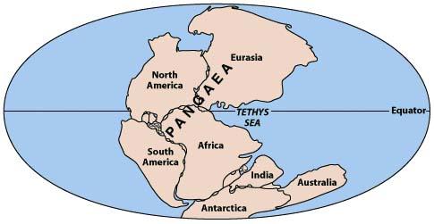 Plate Tectonics  A Scientific Revolution